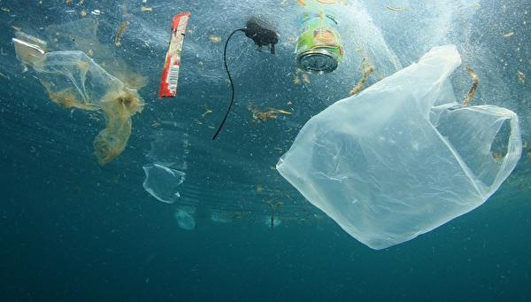 Plastikabfall im Meer, Copyright Richard Carey