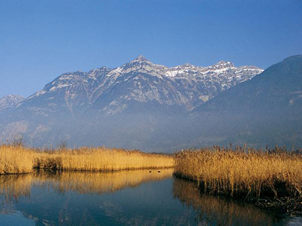 Uferzone Reussdelta