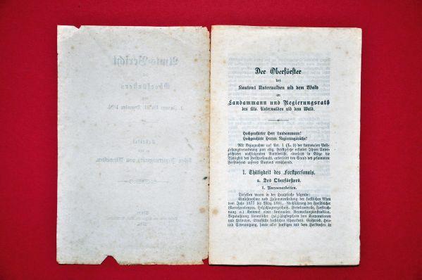 Bericht des Oberf?rsters von 1881