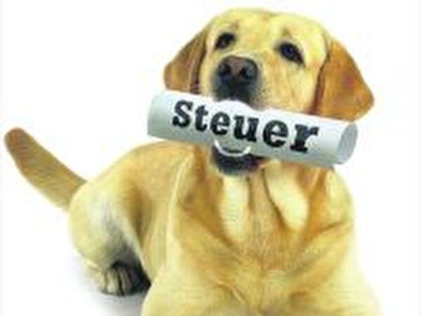 Bild Hundesteuer
