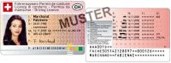 Bild Führerausweis