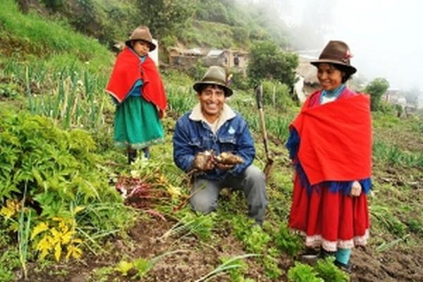 Entwicklungsprojekt 2021 Ecuador