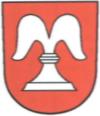 Bisikon