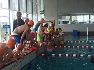 Schwimmstars beim Unterricht