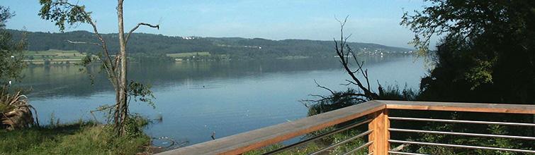 Blick auf den Greifensee