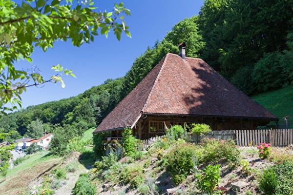 Bild Rettichhaus