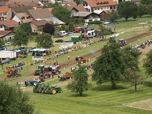 Bild Jugend- und Dorffest 2007