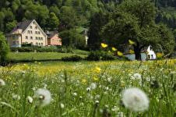 Foto Hofstatt