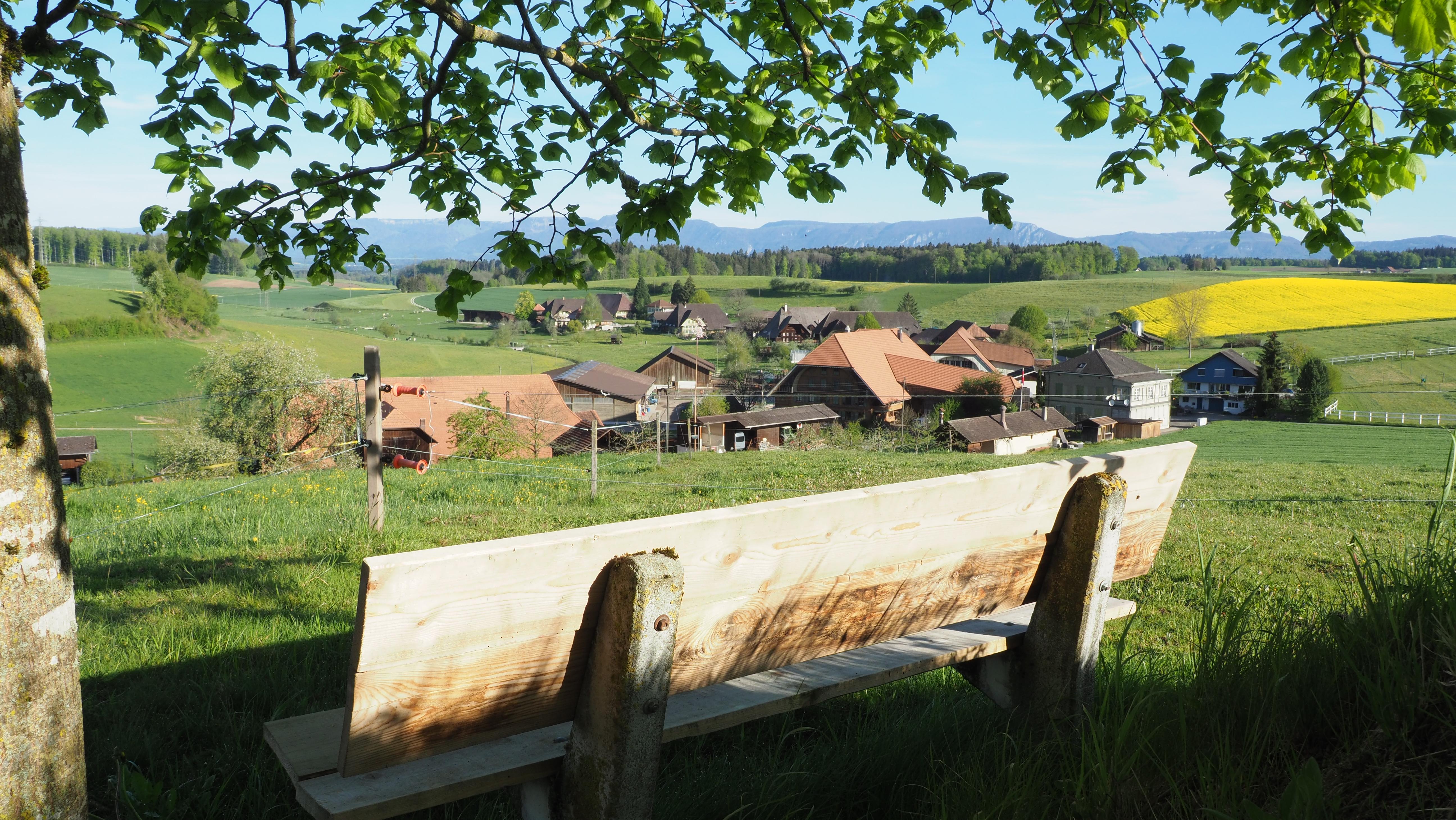 Sicht aufs Dorf
