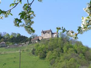 Schloss Wartenfels im Frühling