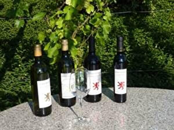 Stadtberger Wein