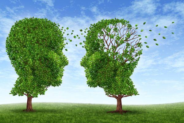 Baum, deren Baumkrone einen Kopf darstellt, wo Blätter weggeweht werden