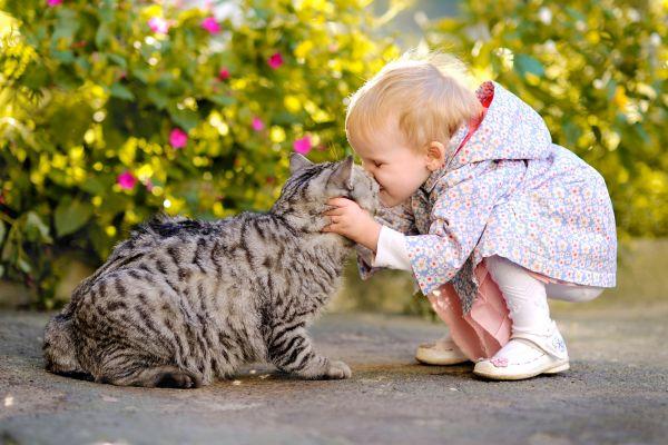 Mädchen, das eine Katze küsst