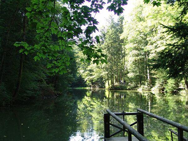 Fahrenbachweiher
