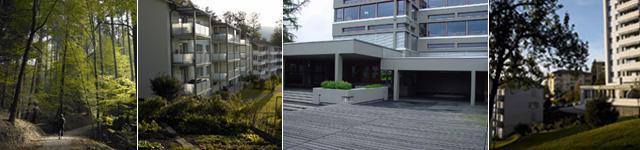 Bireggwald, Wohnhäuser, Schulhaus Biregg