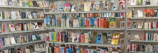 Bücher in der Stadtbibliothek Kloten