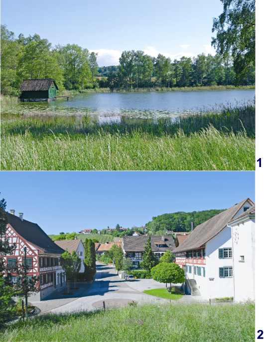 Dorf Nussbaumen