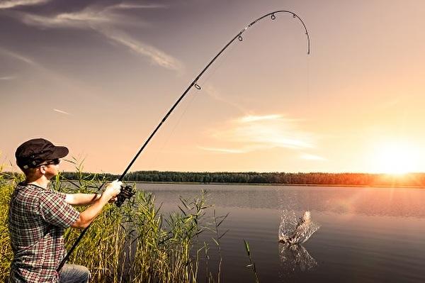 Themenbild zu Fischen, Jagen