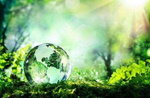 Themenbild zu Umwelt | Nachhaltigkeit
