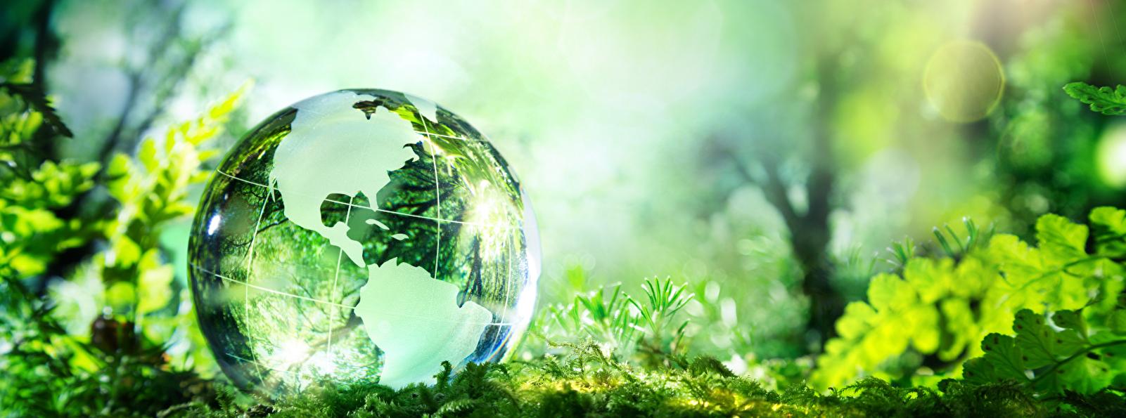 Bild zum Thema Umwelt Nachhaltigkeit