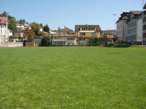 Bild Rasenplatz Wilen