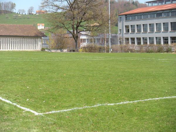 Bild Kleiner Rasenplatz Ebnet