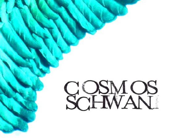 Flyer Cosmos Schwan