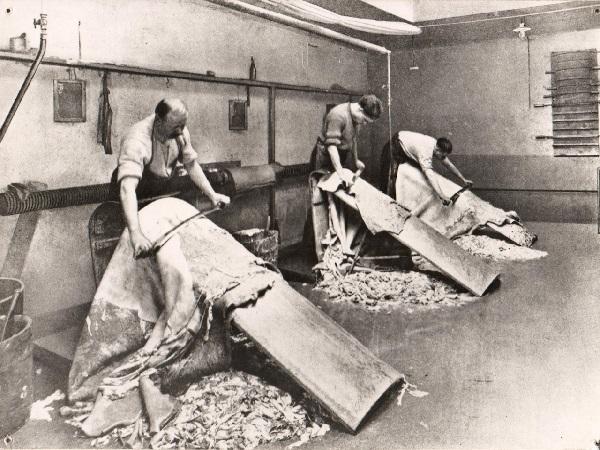 Lederherstellung in der Gerberei Hüni: Scheren der Häute