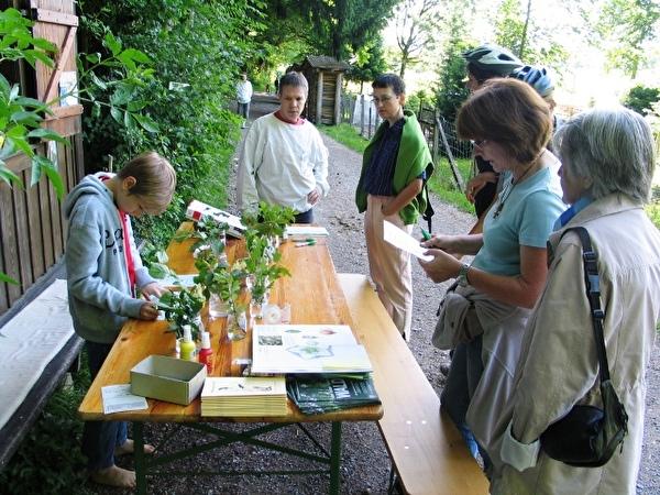 Aktionstag Wald