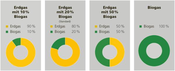 Erdgas- und Biogasprodukte ab 1. Januar 2021