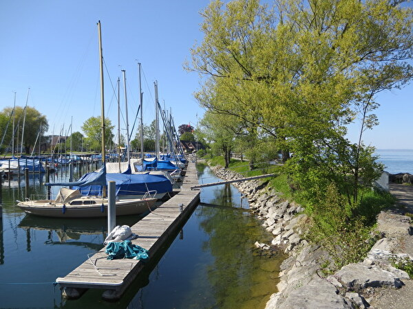 Hafen Rietli