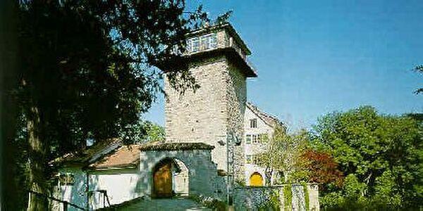 Schloss Sulzberg