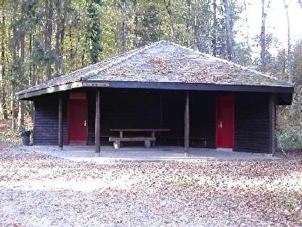 Bild Waldhütte Gubrist