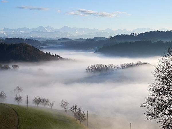 Berner Alpen über dem Nebelmeer