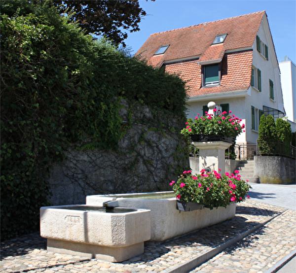 Dorfbrunnen beim Ochsen