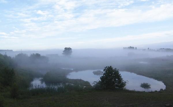 Amphibienlaichgebiet Ziegelei