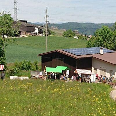 Gemeinde Pratteln Festival der Natur