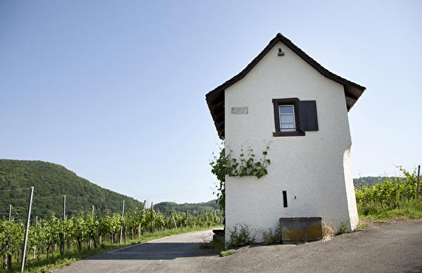 Rebhäuschen Gemeinde Pratteln Bammerthäuschen Bammerthaus Bammert Weinbau
