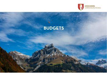 Deckblatt Budgets