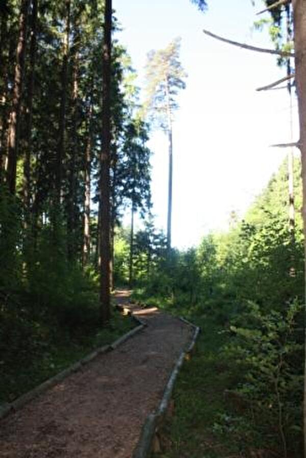 Finnenbahn