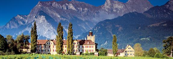 Schloss Salenegg mit Reben