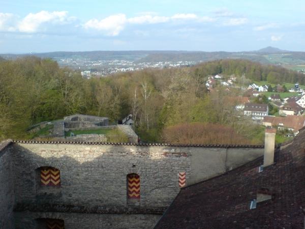 Blick vom Schloss Habsburg