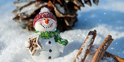 Beitrag an Spitex Sursee und Umgebung anstelle Versand von Weihnachtskarten