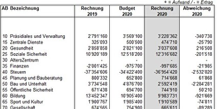 Jahresbericht mit Jahresrechnung 2020