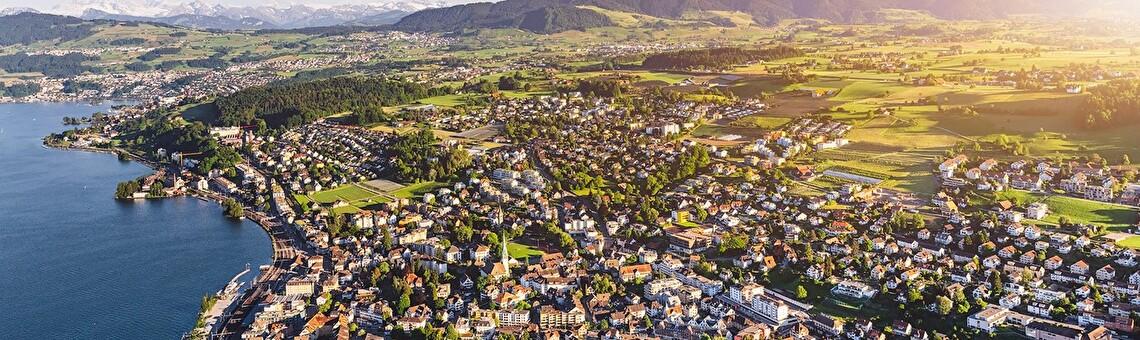 Luftbild der Stadt Wädenswil