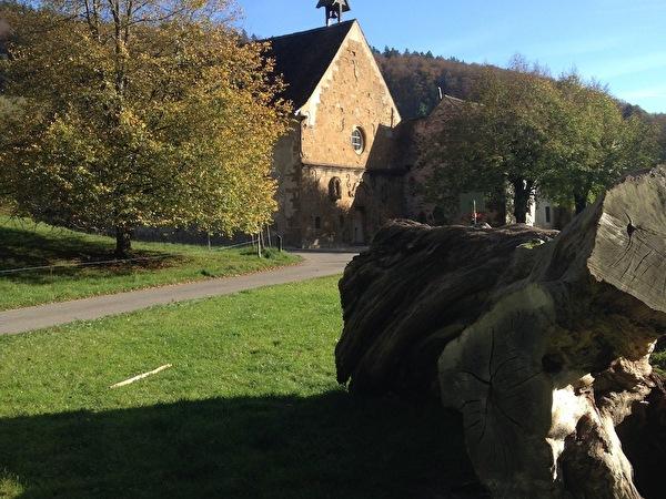 Weiterbildung Kunstkommission, Schönthal 2014