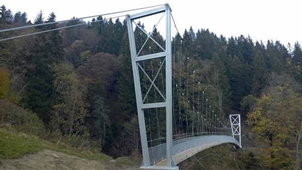 Bild Hängebrücke