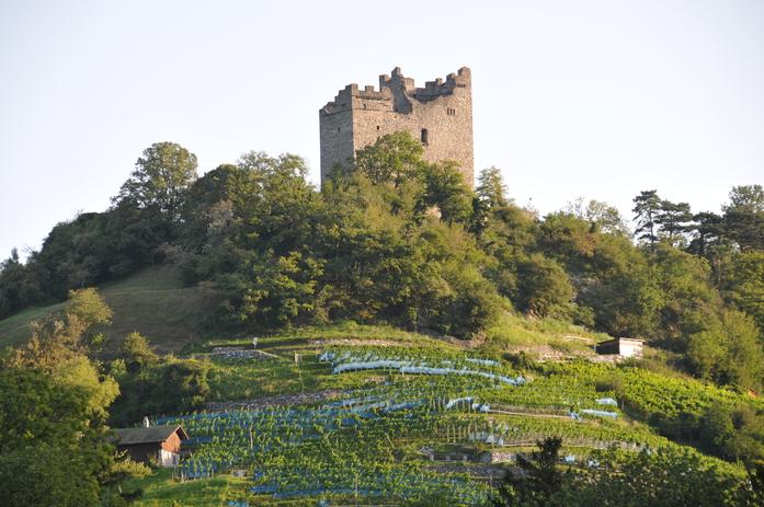 Ansicht Burghügel