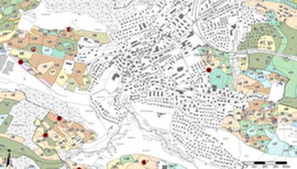 Ausschnitt Bodenkarte