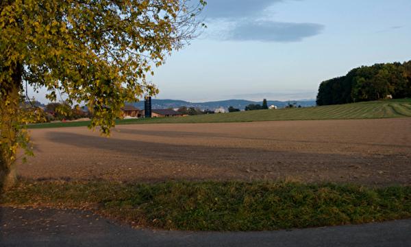 Landwirtschaftszone auf dem Schlieremer Berg